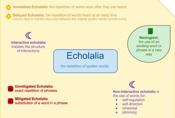 What is echolalia autism in simple terms
