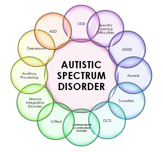 common co-existing conditions with Autism